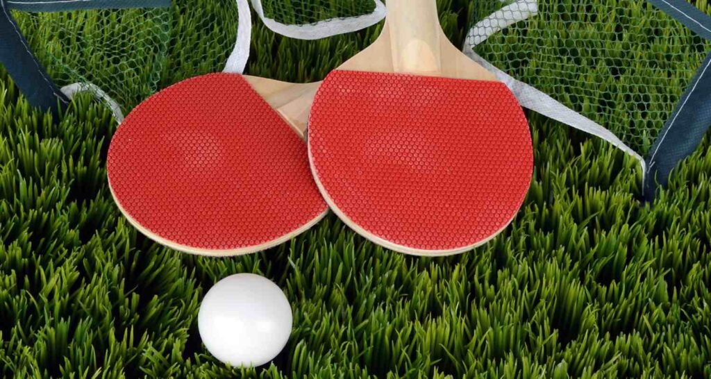 ping pong paddle blades including net and ball