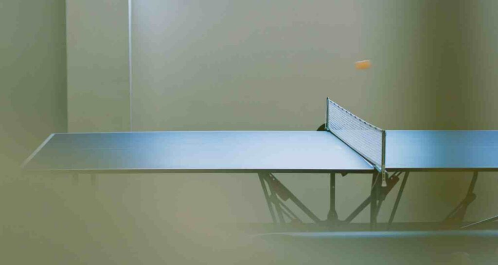 Which ping pong table brands are the best?