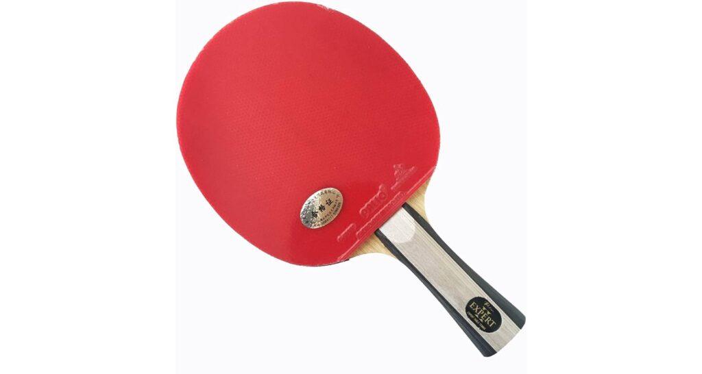 Palio-Expert 2 Table Tennis Bat Review Full Bat