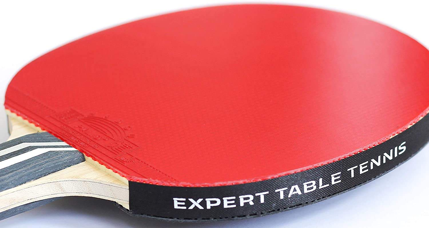 Palio Legend 3.0 Ping Pong Paddle Review - Red Rubber