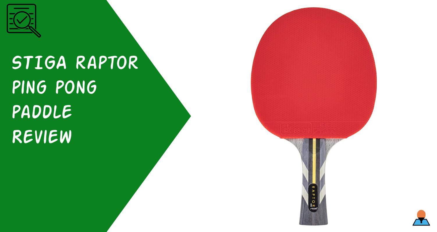 STIGA Raptor Paddle Review Feature